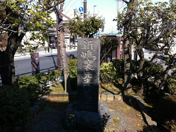 大河ドラマ『八重の桜』を欠かさず見てます。水曜どうでしょうも好きです。