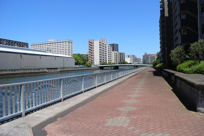 豊洲護岸02