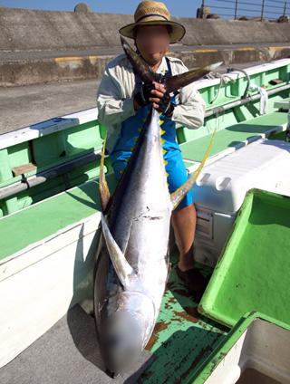 関東周辺で鮭の遡上率が増えているの話