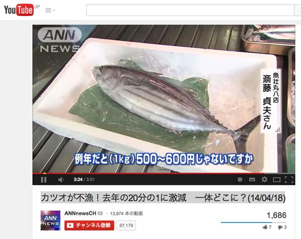 カツオ500円