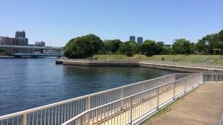 東京湾奥江東区臨海部の移り変わりと海の水質はいいのか悪いのか。